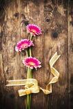 Pranchas de madeira rústicas da fita da flor do Gerbera. Imagem de Stock