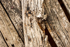 Pranchas de madeira velhas Imagem de Stock