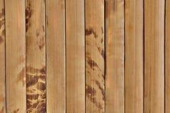 Pranchas do bambu do fundo Imagem de Stock