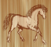 Prancing horse painting Stock Image