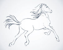 Prancing horse. Vector drawing Stock Images