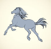 Prancing horse. Vepktorny drawing Royalty Free Stock Image