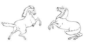 Prancing stallions. Handdrawn stallions on black and white stock illustration