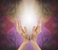 Pranic healer sensing energy Royalty Free Stock Image