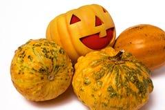 Prank Pumpkin Royalty Free Stock Image