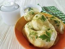 Pranzo casalingo del tovagliolo dell'aperitivo tradizionale della forcella della cipolla verde della cucina della salsa del prezz Immagine Stock
