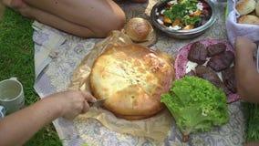 Pranzo di picnic all'aperto video d archivio