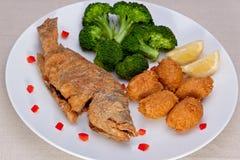 Pranzo fritto dei pesci Fotografia Stock Libera da Diritti