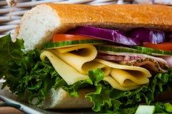 Pranzo leggero con il panino Immagini Stock Libere da Diritti