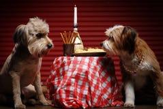 Pranzo per due Immagine Stock