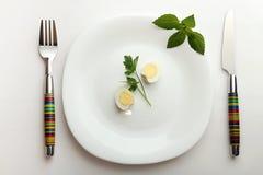 Pranzo per la dieta Fotografia Stock Libera da Diritti