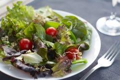 Pranzo sano, patatine fritte, insalata fresca Fotografia Stock