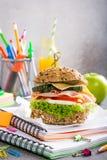 Pranzo sano per la scuola con il panino Fotografie Stock Libere da Diritti