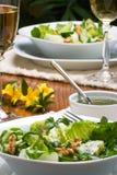 Pranzo vegetariano Fotografie Stock