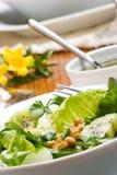 Pranzo vegetariano Immagine Stock
