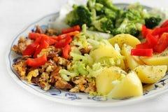 Pranzo vegetariano Fotografia Stock Libera da Diritti