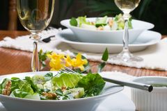 Pranzo vegetariano dell'insalata verde Fotografia Stock Libera da Diritti