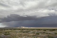Prarie landskapbeneats en mörk bluegrey fördunklade himmel royaltyfri fotografi
