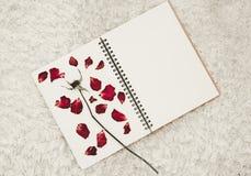 Prasa suszący róża kwiatu płatki na notatnik stronie na białym dywanowym futerku, Obraz Royalty Free