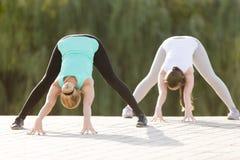 yogi female doing prasarita padottanasana pose stock photo