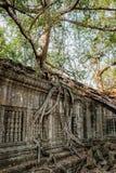 Prasat Beng Mealea στην Καμπότζη Στοκ εικόνα με δικαίωμα ελεύθερης χρήσης