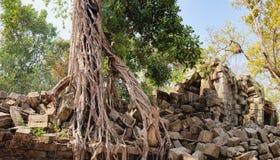 Prasat Beng Mealea in Kambodscha Lizenzfreie Stockfotografie