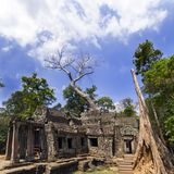 Prasat Ta Prum. Trees and Sky. Royalty Free Stock Photo
