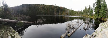 Prasilske湖在Sumava国家公园 库存图片