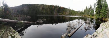 Prasilske sjö i den Sumava nationalparken Arkivbilder