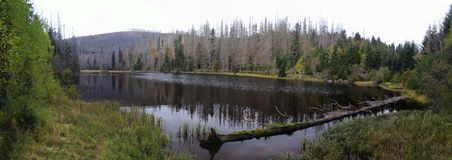 Prasilske sjö i den Sumava nationalparken Royaltyfri Bild
