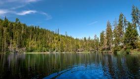 Prasily lake in Sumava national park, Czech Republic. royalty free stock photography
