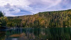 Prasily lake in Sumava national park, Czech Republic. royalty free stock photos