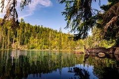 Prasily lake in Sumava national park, Czech Republic. royalty free stock image