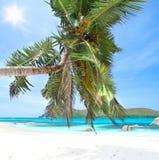 Praslin - Anse Boudin Стоковое Изображение