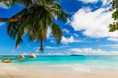 praslin du Latium d'île d'anse Les Seychelles Photos stock