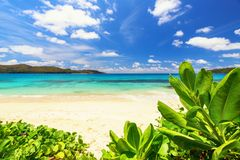 Praslin island Tropical beach with green foliage and nice sea si. De view, Seychelles Royalty Free Stock Photography