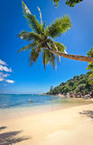 praslin seychelles för 3 strand Arkivfoton