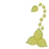 Prasowy zieleni róży liść Obraz Stock