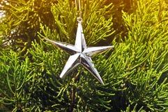 Prata da estrela Fotografia de Stock