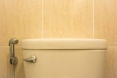 Prateleira do banheiro Fotos de Stock Royalty Free
