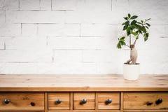 Prateleira, flor e parede de madeira imagens de stock royalty free