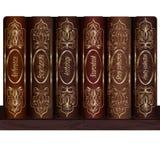 Prateleira para livros Fotos de Stock Royalty Free