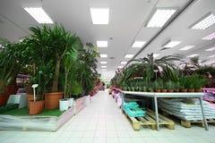 Prateleiras com variedade de plantas da cerâmica imagem de stock royalty free