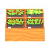Prateleiras do supermercado com ruits e vegetais Os vegetais saudáveis frescos no supermercado armazenam o vetor colorido ilustração do vetor