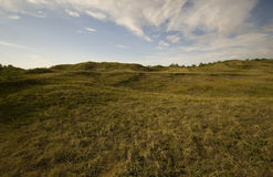 Prateria del nativo di Saskatchewan Fotografie Stock Libere da Diritti