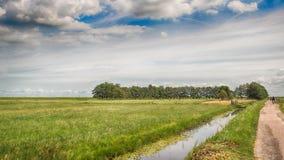 Prateria dell'Olanda Fotografie Stock