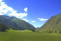 Prateria in Xiata, Xinjiang Immagini Stock