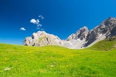 Prati alpini di fioritura e catena montuosa rocciosa di elevata altitudine con cielo blu profondo Immagine Stock