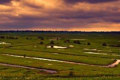 Prati costituiti dalle dighe in Olanda Immagine Stock Libera da Diritti