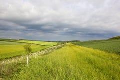 Prati dei wolds di Yorkshire Fotografia Stock Libera da Diritti